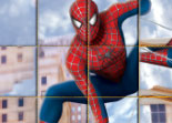 Spiderman 2010