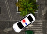 Voiture de Police Parking Tropical